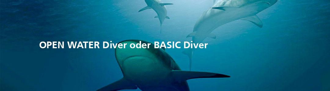 OPEN WATER Diver oder BASIC Diver